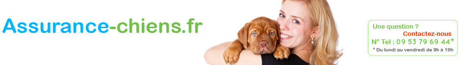 assurance-chiens